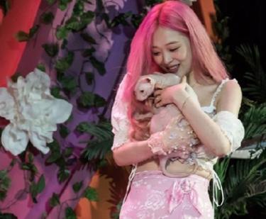 故元f(x)ソルリの愛猫ブリンがSuper Juniorヒチョルの元から親友女優キム・ソナの元へ!現在の様子は?