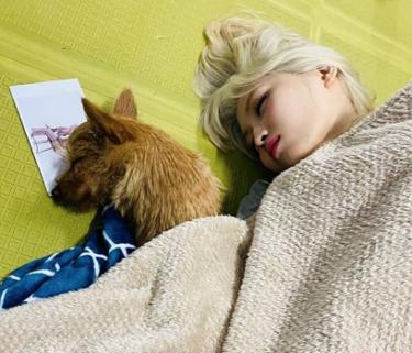 TWICEモモは赤ちゃん??モモ、ツウィの愛犬と眠るモモの寝顔が天使すぎると話題!!